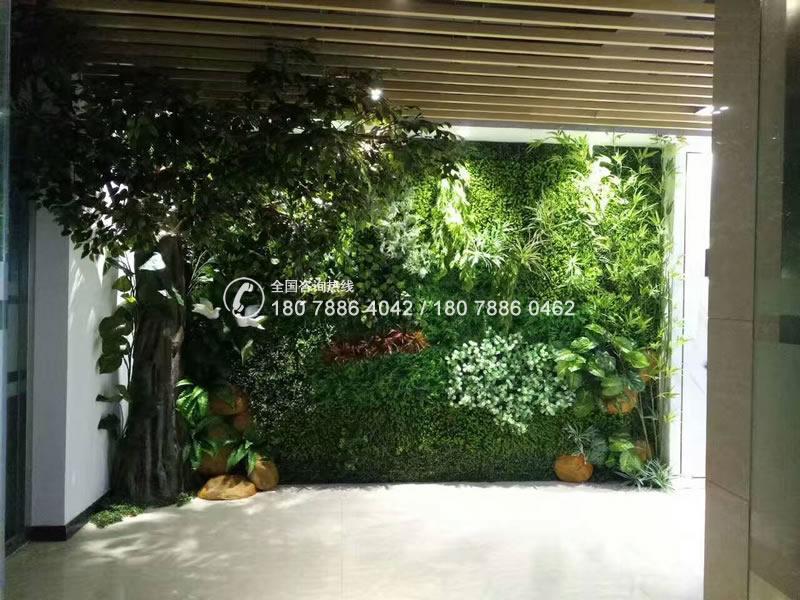 惠州金鹏 仿真植物墙