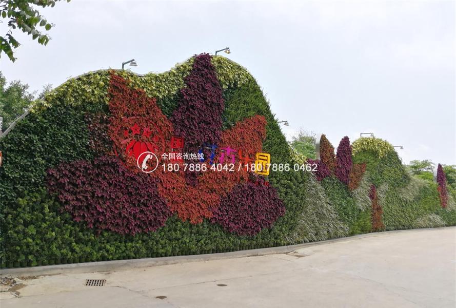 番禺连花水乡 植物墙