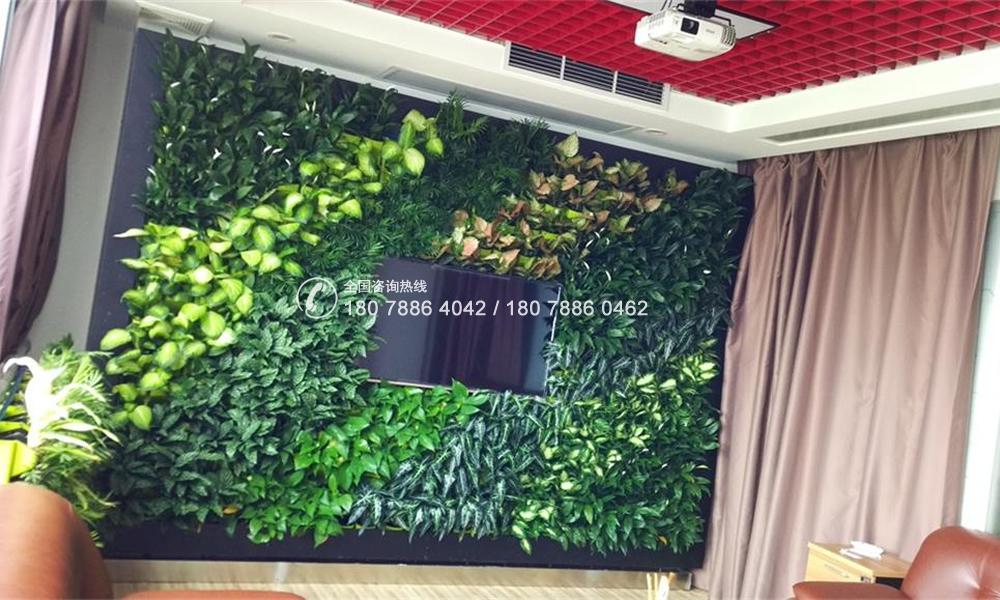垂直绿化植物墙 电视背景墙