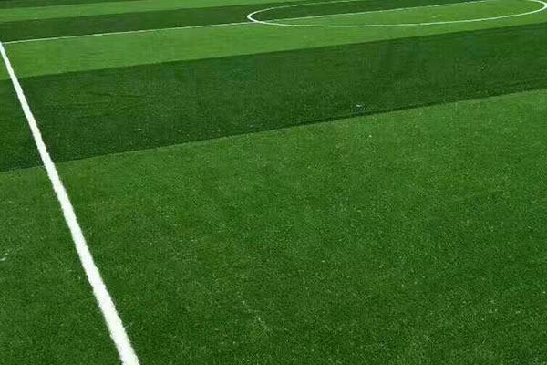 人造草坪和草毛形状有什么不一样