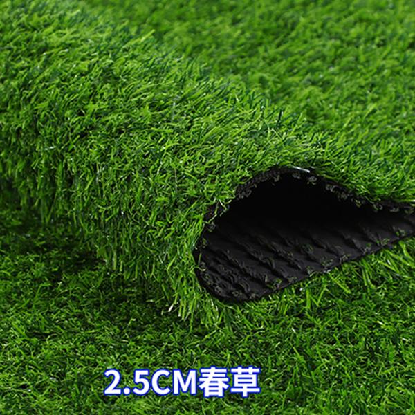 人造草坪 2.5CM春草