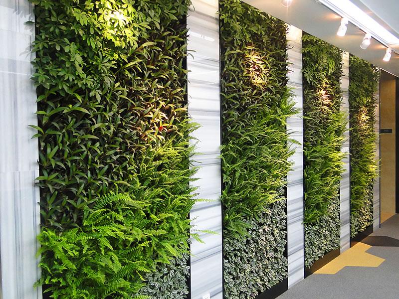 珠海南方软件园 垂直绿化植物墙