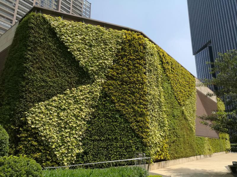 天汇广场 垂直绿化植物墙