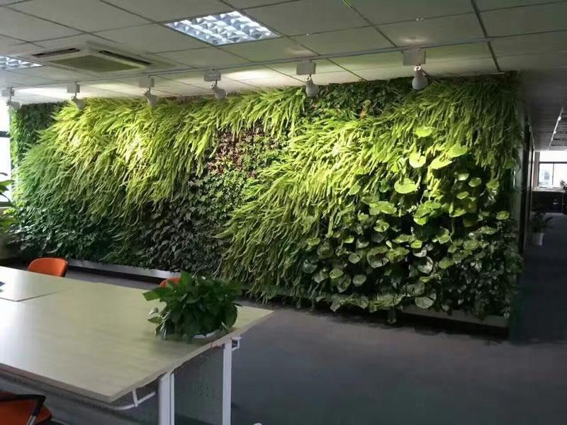 龙华科技园 垂直绿化植物墙