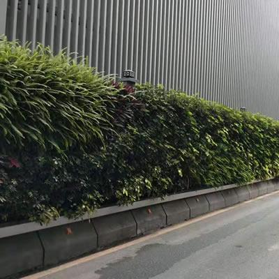 植物墙围挡厂家