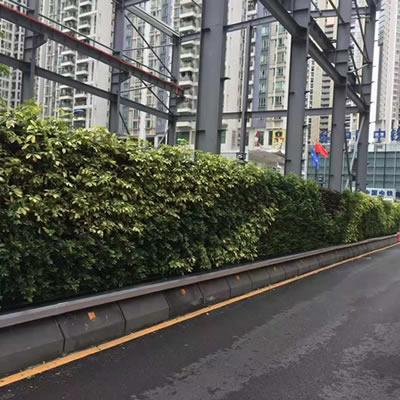 植物墙围挡