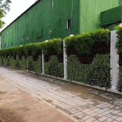 工地围挡绿化