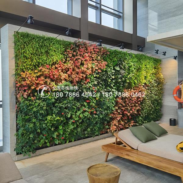 植物墙景观 垂直绿化效果
