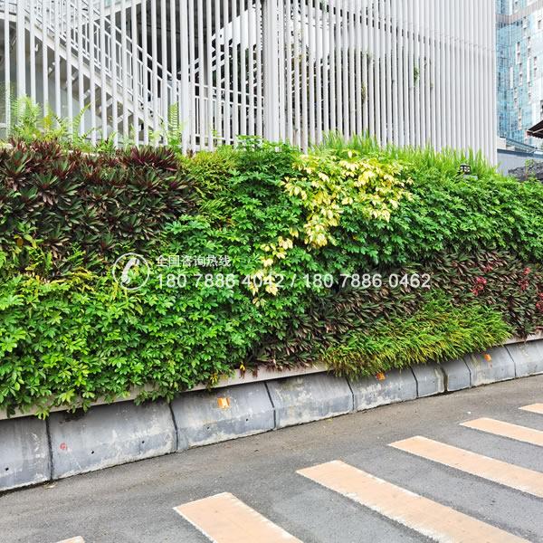 植物围挡绿化项目
