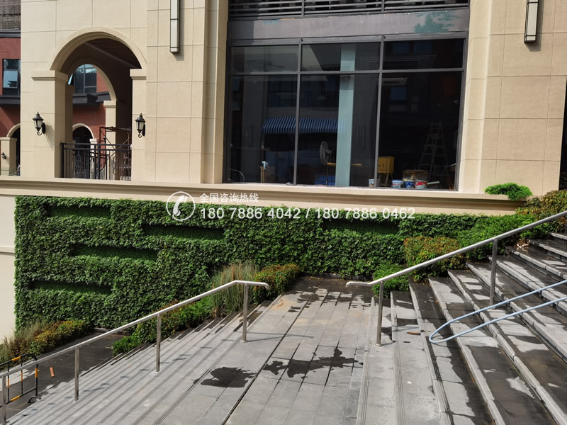 海乐荟 创意植物墙
