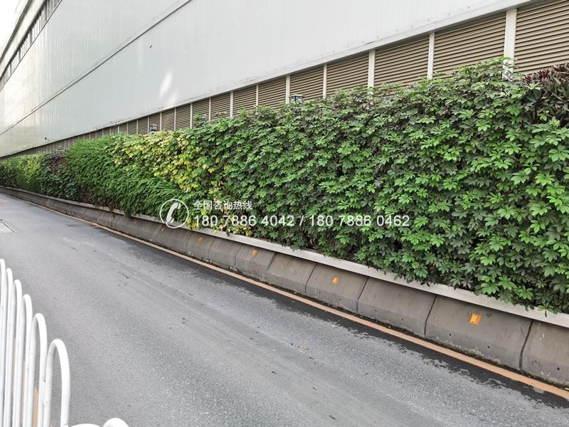 中铁十局 植物墙围挡绿化