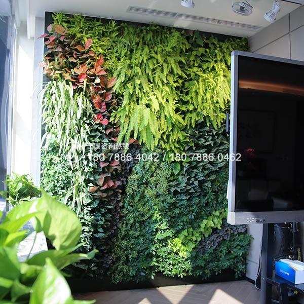垂直绿化植物墙公司