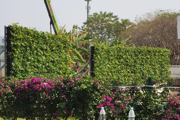 围挡绿化在安装的时候要注意什么