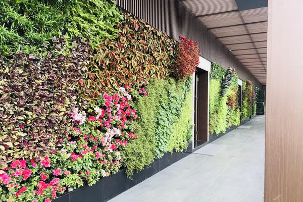 如何参考植物墙效果图完成基础设计