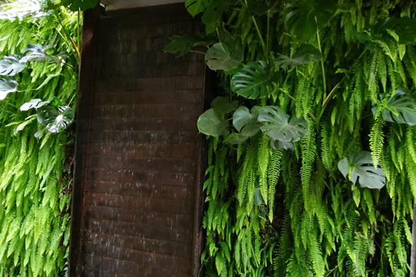 植物墙围挡厂家可以提供哪些方面的服务