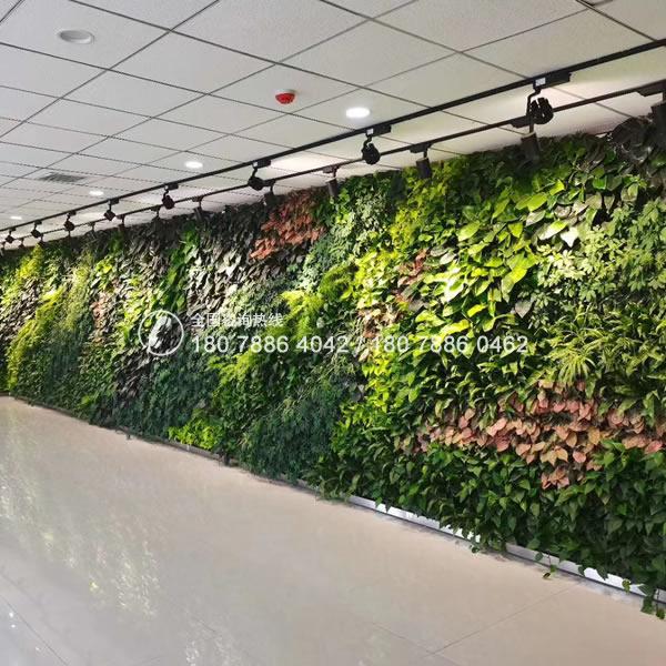 佛山垂直绿化植物墙