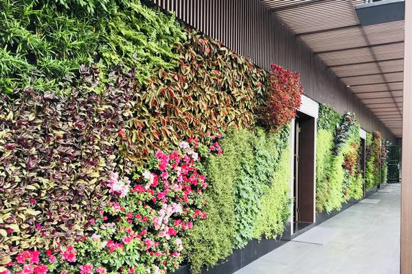 植物墙围挡公司哪家好?该如何选择合适的公司?