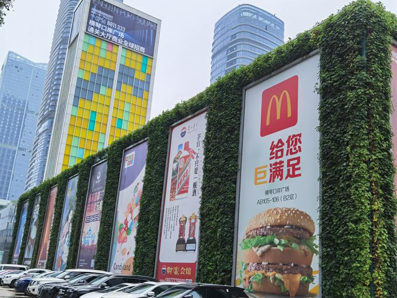 珠海植物墙 横琴购物广场