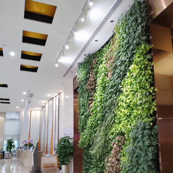 广州垂直绿化 植物墙厂家
