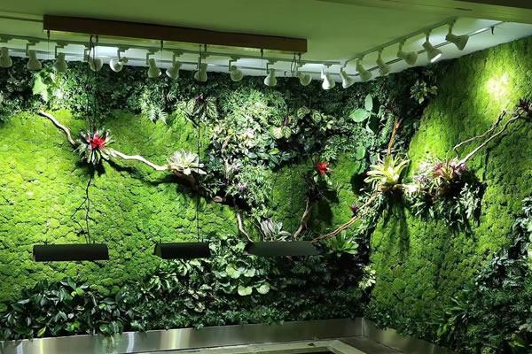 植物墙工地围挡建设时要关注的几个要点