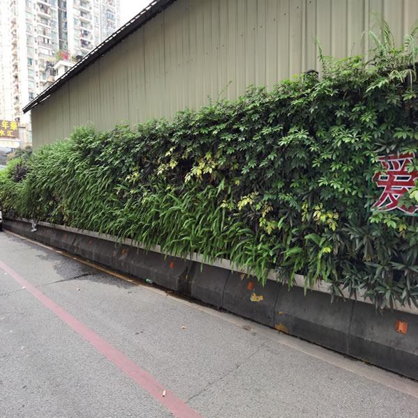 广州围挡绿化工程