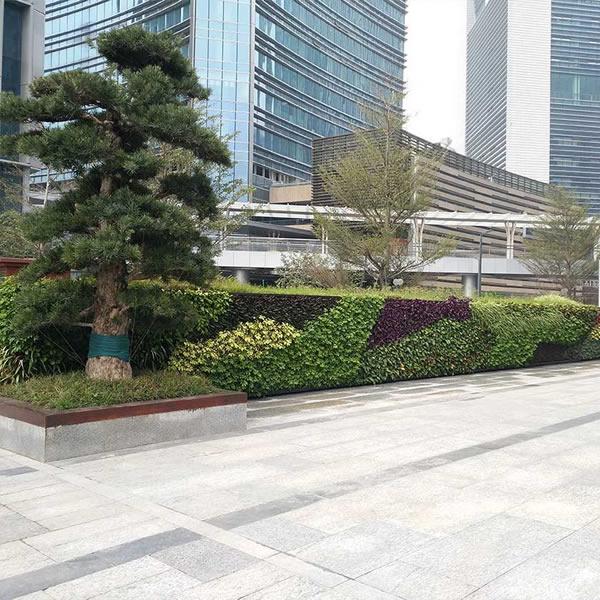 植物围墙公司