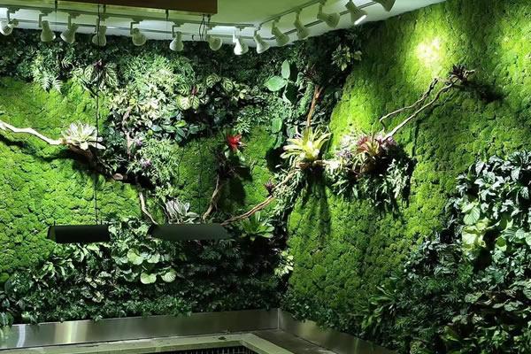 植物墙价格受到哪些因素的影响