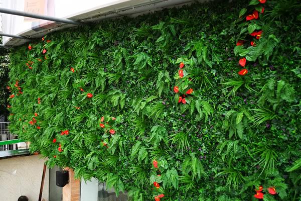 哪里有比较好的植物墙公司